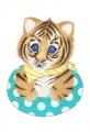 A5 kaart + envelop Luca het tijgertje