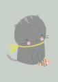 ansichtkaart kat