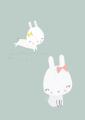 ansichtkaart bunnies