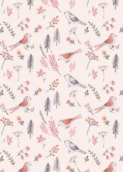 ansichtkaart birds